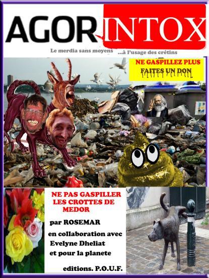 Agorintoxrosemar3