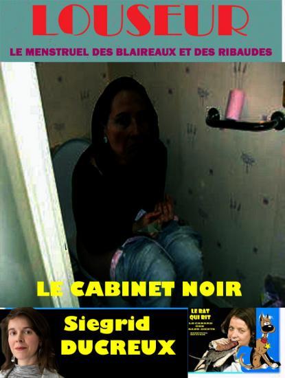 Cabinet noirlouseur