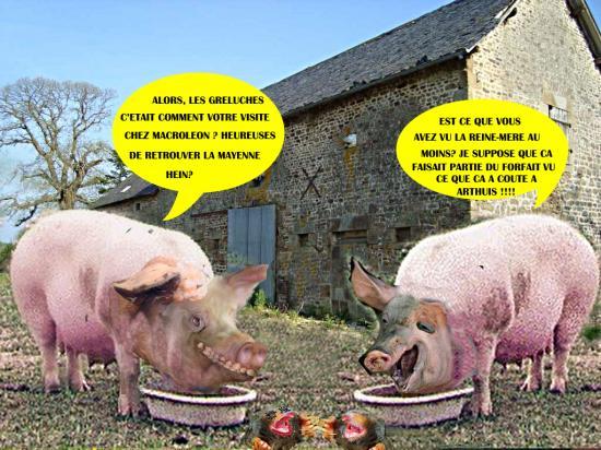 Cochons et taupes 1