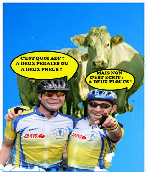Cycloboeux adp