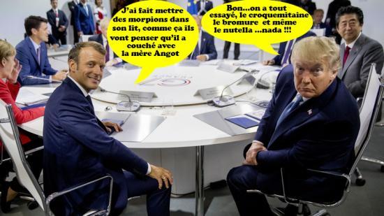 G7 trumpmorpions