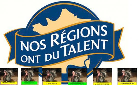 logo-nos-regions-ont-du-talent-e-leclerc-copy.jpg