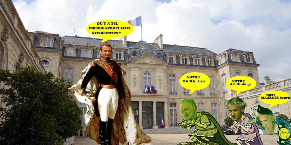 O palais elysee les sycofientes macroleon royal1