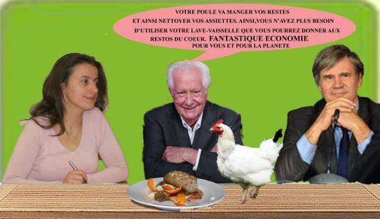 poule3tx-edited-1.jpg