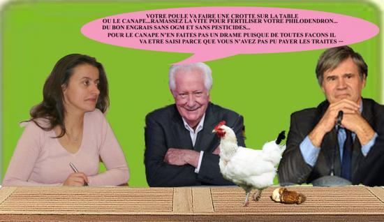 poule4txpsd-edited-1.jpg