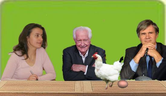 poule5.jpg
