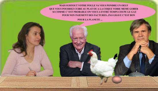 poule5tx-edited-1.jpg