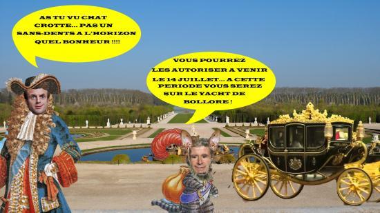 Versailles macroncopy