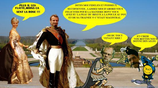Versaillesmacrobri puducus1 edited 1