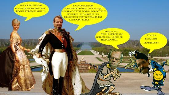 Versaillesmacrobri puducus2
