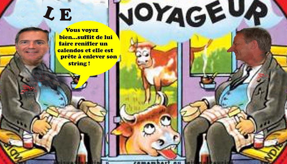Voyageur 202 20pinofou